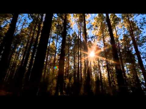 Above & Beyond -pres Oceanlab Miracle- Original Mix[ HD]¸. • * ¨` * ♥ ♥ ♥