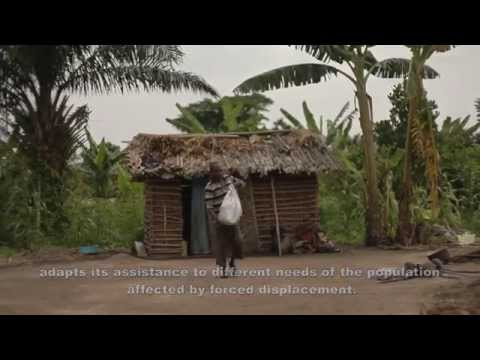Helping the displaced in the Democratic Republic of Congo to rebuild their lives