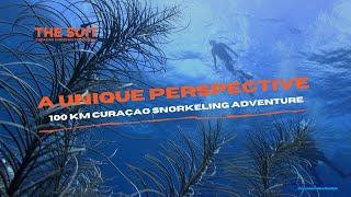 A unique Curaçao Snorkeling Adventure | The Suit Curacao