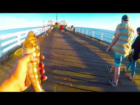 Fishing on Malibu Pier Feb & March 2017
