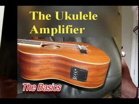 hook up multiple amplifiers