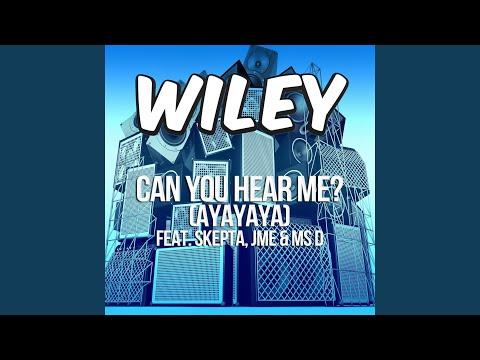 Can You Hear Me? (ayayaya) (ft. Skepta, JME & Ms D) (Instrumental)
