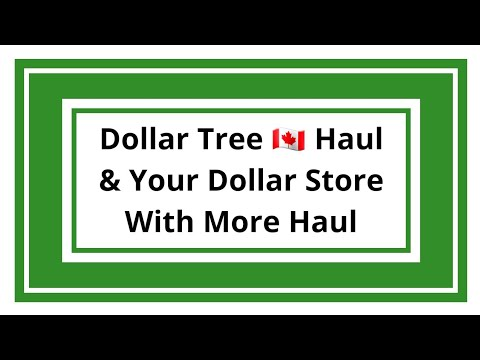 Dollar Tree Haul | Your Dollar Store With More Haul