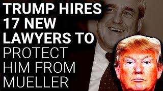 PANIC: Trump Hires 17 More Lawyers to Protect Him from Mueller