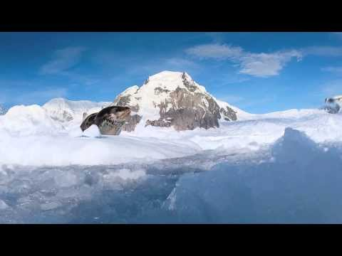 Elysium Epic - Shackleton Antarctic Visual Epic:part 8 - Lord of Ice