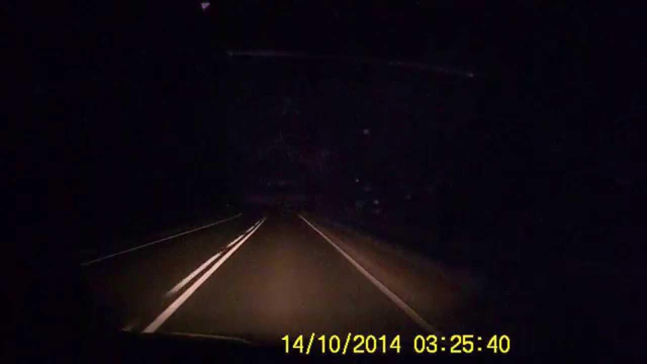 Wypadek Maciejowa Łabowa Kolizja dzik na drodze (DK-75 Nowy Sącz Krynica) wild boar crash Poland