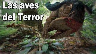 Las AVES DEL TERROR y su Extinción