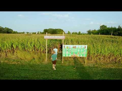 Abbey Farms #IL200 Corn Maze!