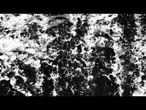mouse on the keys - leviathan
