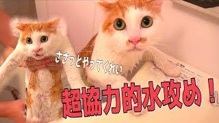 ニックさんの水攻めは毎回楽で良きです 12月15日に大阪・道頓堀イベント...
