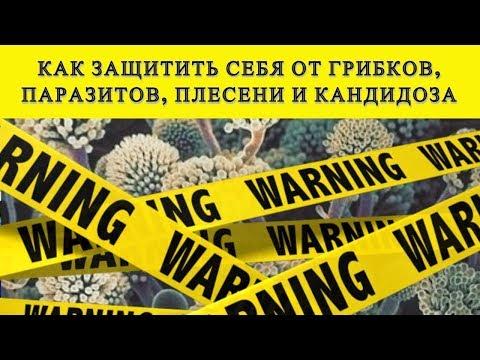 НЕ КОРМИТЕ ГРИБКИ, ПАРАЗИТОВ, ПЛЕСЕНЬ В ВАШЕМ ОРГАНИЗМЕ! ИНАЧЕ ОНИ УНИЧТОЖАТ ВАШЕ ТЕЛО#DomSovetov