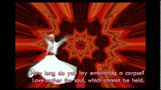Rumi ♡ Be foolishly in Love