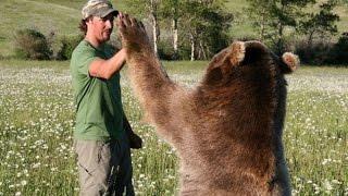 Просто супер! Любовь и дружба диких животных с человеком бывает безгранична.