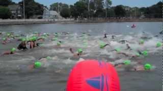 Wild Fish 1 & 2 Mile Swim In Salem Ma