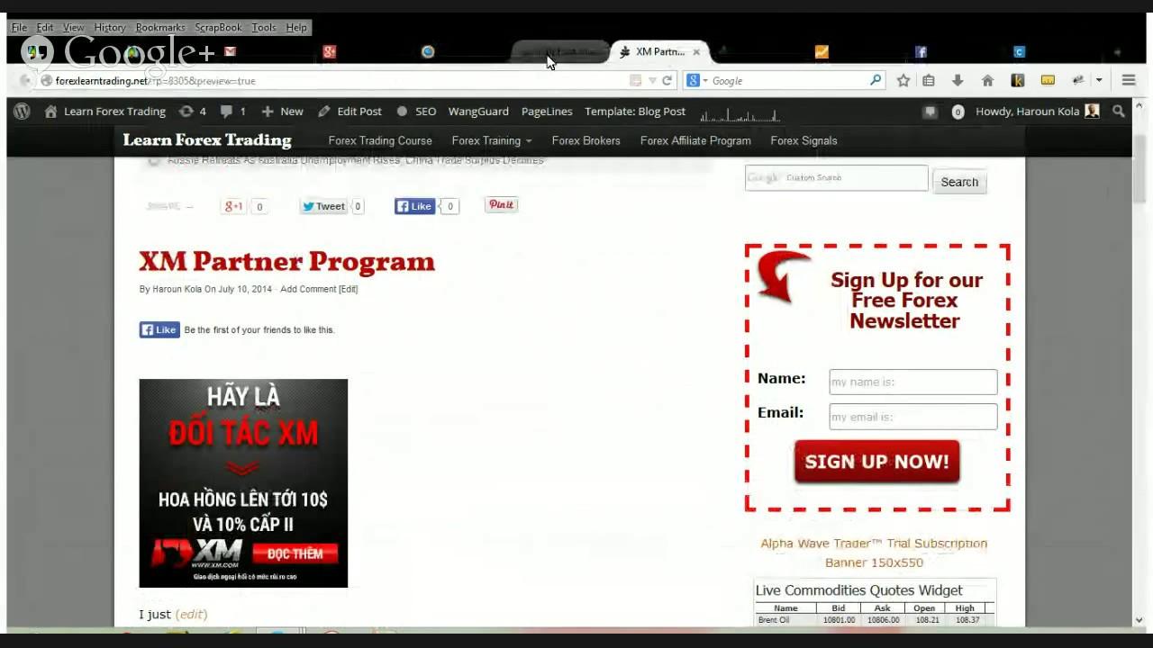 Forex partner program