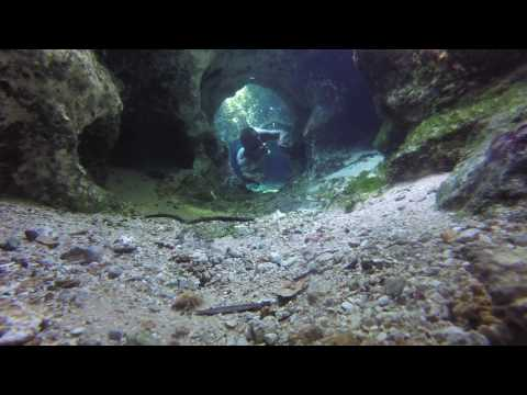 Underwater Cave Exploring: Free Diving In Florida Springs