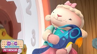 Pet Rescue: A Cuckoo Case | Doc McStuffins | Disney Junior