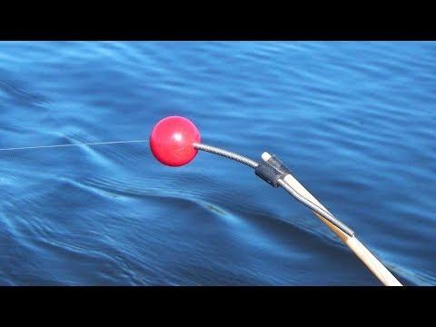 Ловля на КОЛЬЦО Результат рыбалки превзошёл все ожидания СИБИРИЯ
