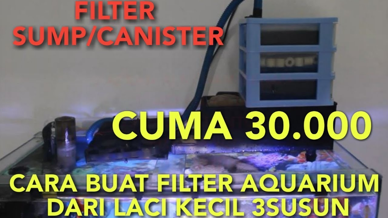 Cara Membuat Filter Aquarium Dari Laci