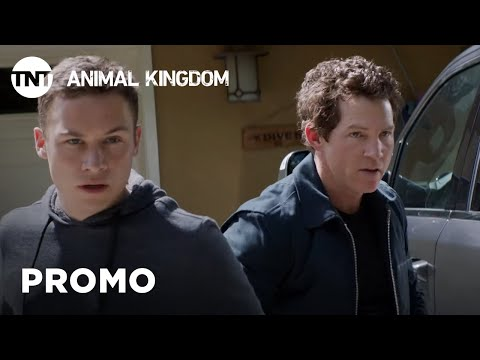 Animal Kingdom: Binge Season 4 [PROMO] | TNT
