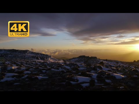 HD│ 4K 60fps │Free Video Background Loops │ Nature │ Paisaje │Motion Graphics - green screen 020