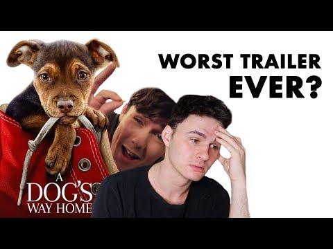 A Dog's Way Home - Trailer Trash