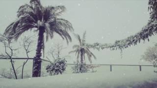 Die Heiterkeit - Die Kälte