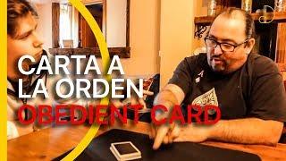 Carta a la orden | Obedient card dD