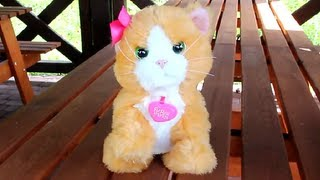 Interactive Kitty Daisy / Interaktywny Kotek Daisy - Plays with Me Kitty - FurReal Friends - A2003