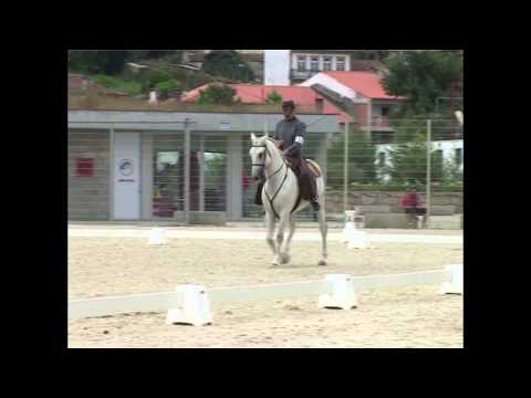European Championship Working Equitation 2009 - Pedro Neves - Dressage