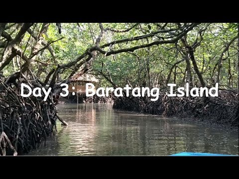 Day3 Andaman: Complete Tour Guide: Baratang, Lime Sone Cave, Mud Volcano: DIY Tour