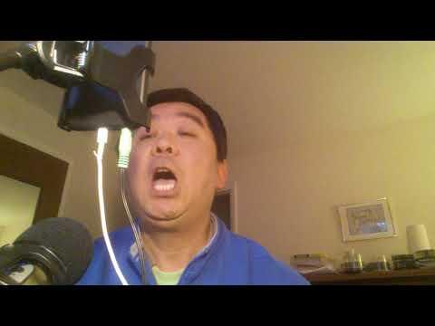 The English song I sing - Roman holidays