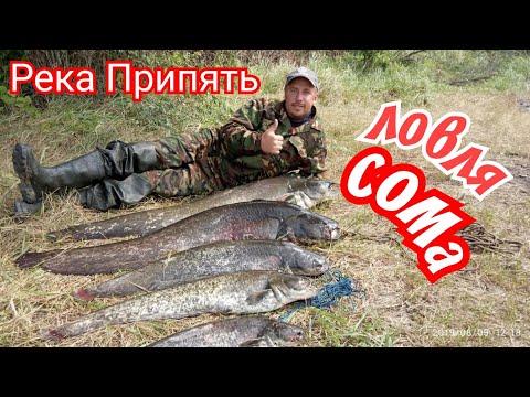Ловля СОМа троллингом(на дорожку).река Припять.Отдых.Пятидневная рыбалка.