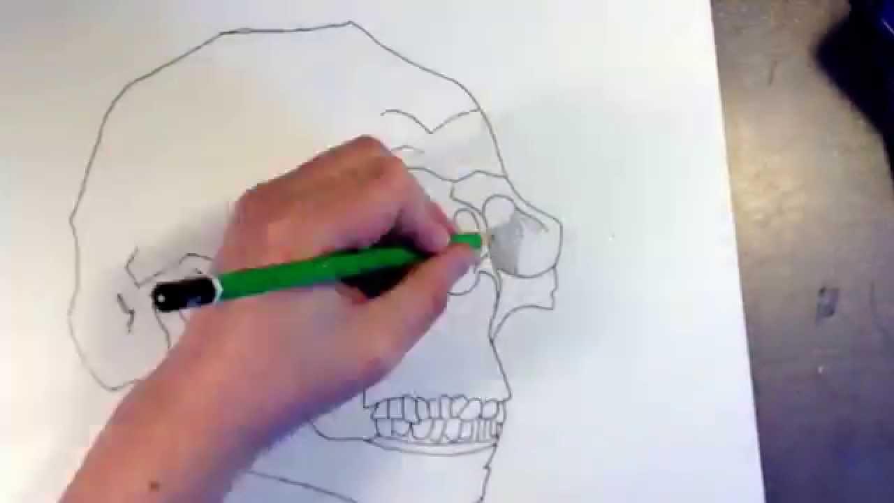Comment dessiner une t te de mort 2 youtube - Dessiner une tete de mort ...