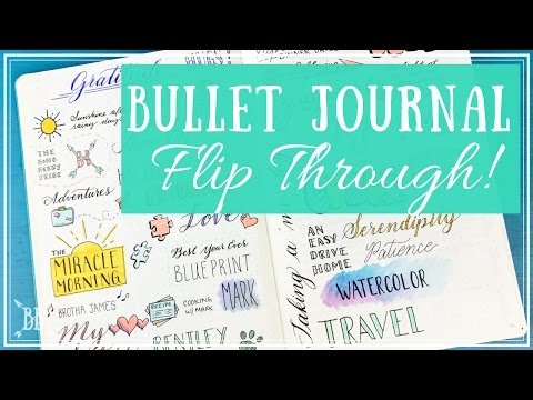 Bullet Journal Flip Through!