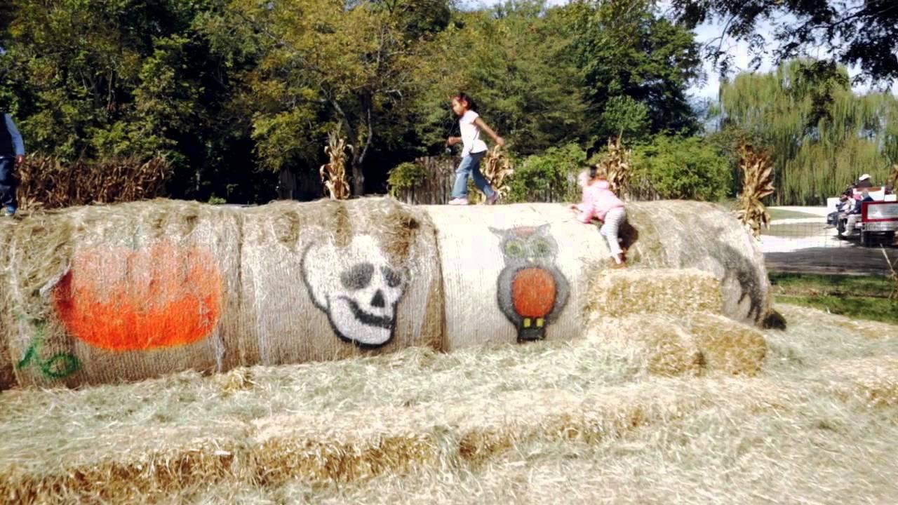 Pumpkin Hollow At The Deanna Rose Childrenu0027s Farmstead