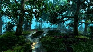 The Witcher 3: Wild Hunt - Velen Nature Theme Extended - Unofficial Soundtrack