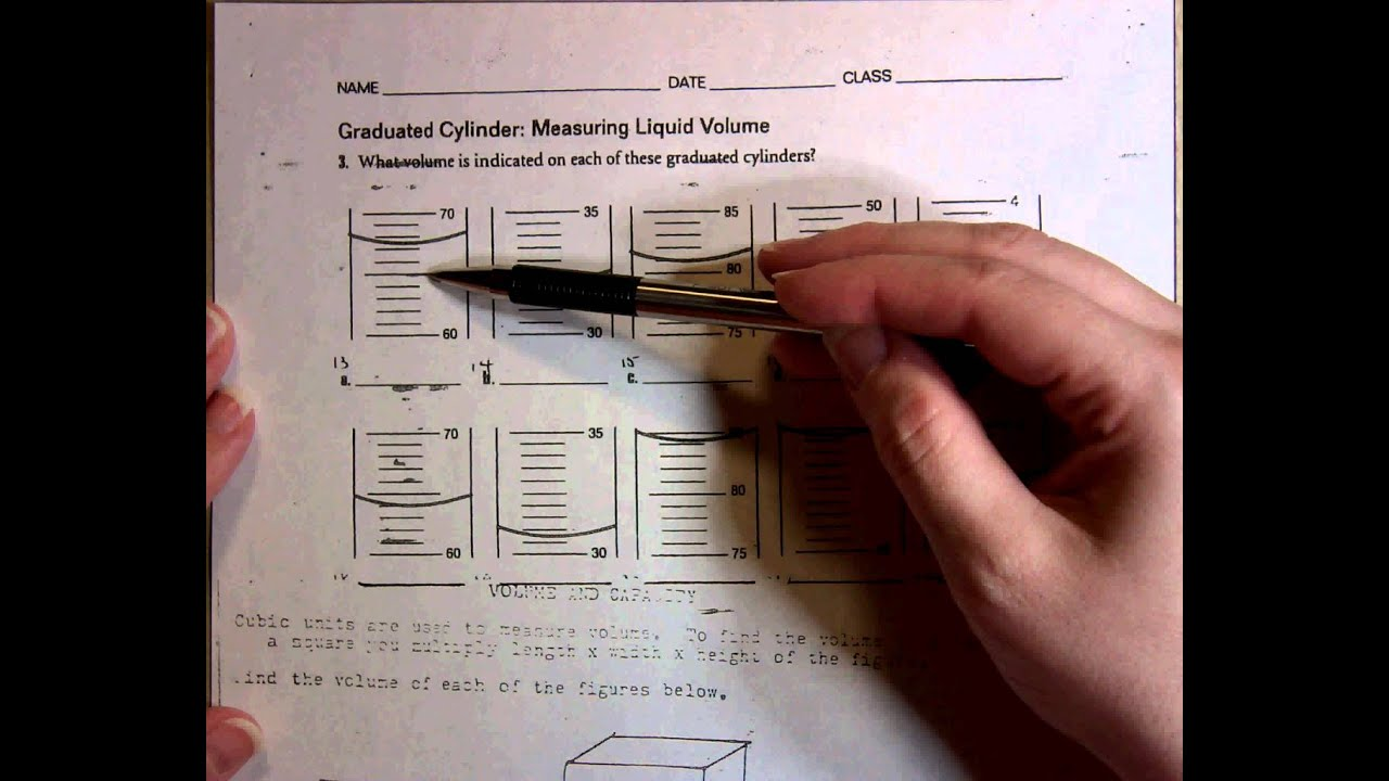 Worksheet Volume Of Cylinders Worksheet Worksheet Fun