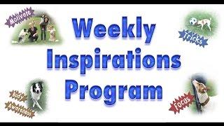 Weekly Inspirations!!!! - Year Long Dog Training Membership Program!