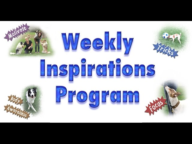 Weekly Inspirations!!!! - Year Long Dog Training Membership Program!