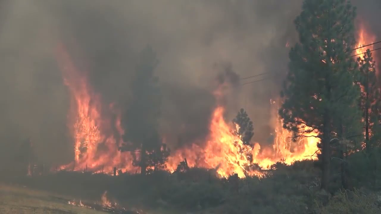 """Better Satellite World video """"Cellular Ends at Forest Edge"""" shows how satellites fight wildfires"""