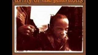 Army of the Pharaohs - young lords
