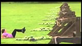 Funny Amazing Race Watermelon