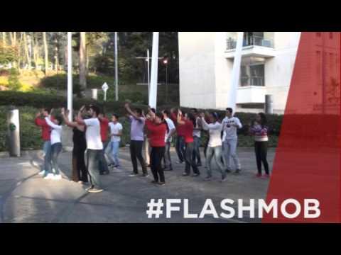 #FLASHMOB #CARTAGENA #2014 #CLAVERIADA
