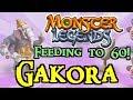 Monster Legends - Feeding to 60! : Gakora