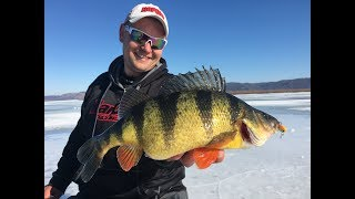 GIANT Perch on the Mississippi River - In-Depth Outdoors TV Season 12, Episode 13