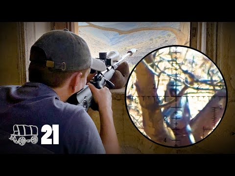 THE STAKEOUT (Monkey, Baboon & Squirrel Hunting) | The Oxwagon Diaries, Pt. 21
