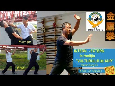 "Intern/Extern: Golden Eagle KungFu (Taiwan - Jin Ying Quan) si ""Fata de Jad la Suveica"" in Taiji"