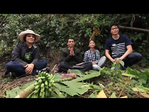 DeScience : งานวิจัยกล้วยกล้วย (19 เมษายน 2557)
