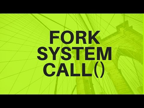 Video 14 :- FORK SYSTEM CALL Questions